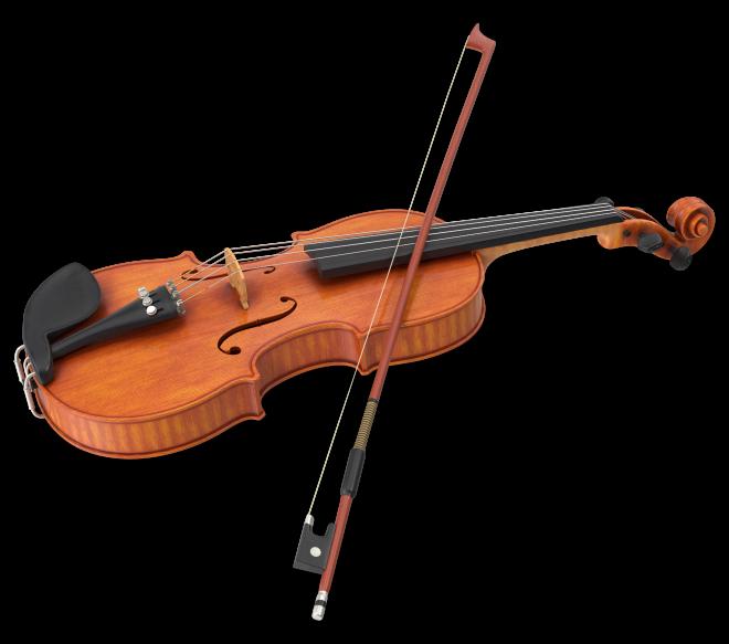 виолина 3д